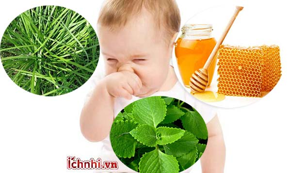 Một số thảo dược dùng để trị ho cho trẻ sơ sinh