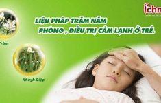 Dầu Tràm Khuynh Diệp Liệu pháp trăm năm phòng, trị cảm lạnh ở trẻ3