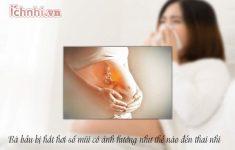 Bà bầu bị hắt hơi sổ mũi có ảnh hưởng đến thai nhi không?2
