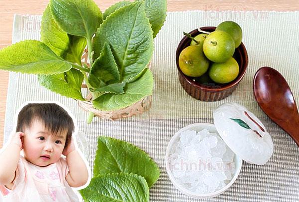 Bài thuốc húng chanh quất đường phèn trị ho tiêu đờm cho bé2