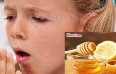 2 Cách làm chanh mật ong trị ho hiệu quả ngay tại nhà1