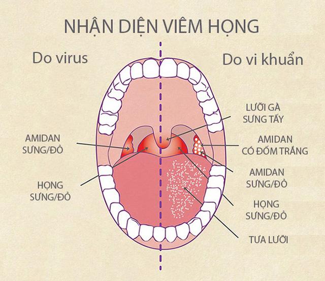 viemhong-1490867595054