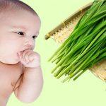 Tiết lộ cách chữa ho cho trẻ sơ sinh bằng lá hẹ hiệu quả